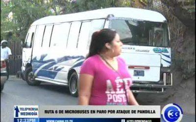 Ruta 6 de microbuses realizó paro por ataque de pandilla